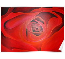 Valentine Red Rose Heart shaped Poster