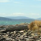 Across the bay at Southport, looking towards Bruny Island by ingridewhere