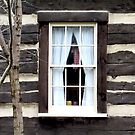 Window to Yesterday by Monnie Ryan