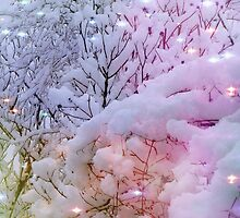 Snow laden trees with a bit of added magic! by Sue Gurney