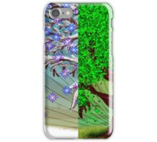 Big tree, winter and summer seasons iPhone Case/Skin