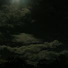 the night sky... by xXDarkAngelXx