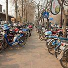 Bicycles by dominiquelandau