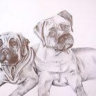Bull Mastiffs by RLHerd