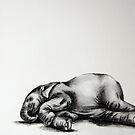 Nap Time by RLHerd