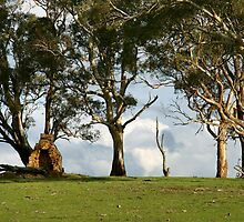 Another Era - Mount Barker by LeeoPhotography