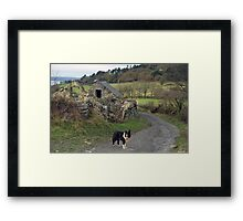 Indy on route Framed Print