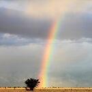 Rainbow Shower... On the farm where I live. by Qnita
