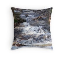 the old creek Throw Pillow