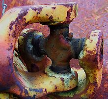 Universal Joint..... by debsphotos