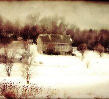 Battle Creek Barn by BarnArtandMore