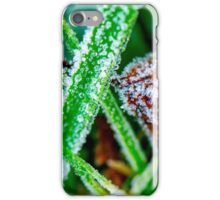 Morning frost in winter iPhone Case/Skin
