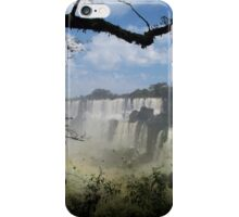 Iguazu iPhone Case/Skin