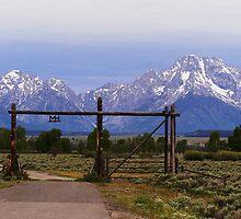 ~ Moose Head Ranch ~ by WesternDreamer