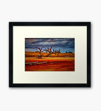 """""""Rusty Lakebed"""" Framed Print"""