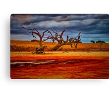 """Rusty Lakebed"" Canvas Print"