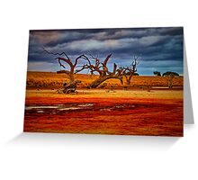 """Rusty Lakebed"" Greeting Card"