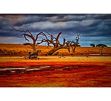 """Rusty Lakebed"" Photographic Print"