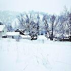 White Snow by Neil Johnson