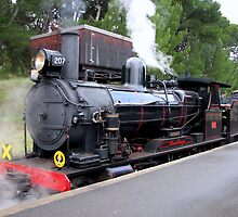 Steam Ranger - Mount Barker by LeeoPhotography