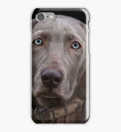 The Weimaraner's Sister iPhone Case/Skin