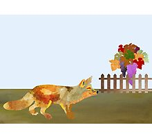 The Fox and the Vineyard Photographic Print