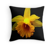 I had to stop & smell the Flowers... Throw Pillow