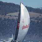 Wild Oats XI winning the 2104 Sydney to Hobart by Odille Esmonde-Morgan