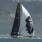 Commanche - 2104 Sydney to Hobart runner up by Odille Esmonde-Morgan