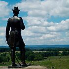 Little round top Gettysburg (color) by Chris  Hayworth