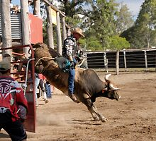 Cowboy Action at the Rodeo by Michael Norris