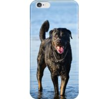 A dog called ''King'' playing in water iPhone Case/Skin