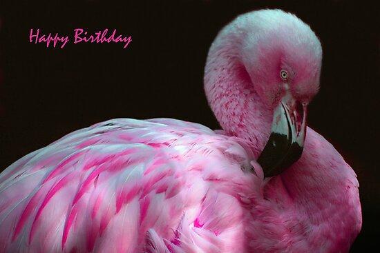 Happy Birthday by ljm000