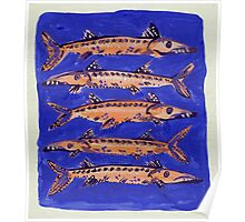 Barracuda on Blue Poster