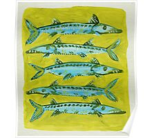 Barracuda on Yellow Poster