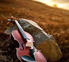 The Violin by Jódís Eiríksdóttir