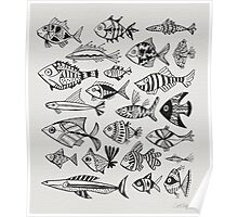 Black Inked Fish Poster