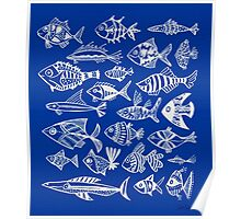 White Inked Fish on Navy Poster