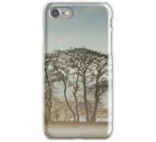 Winter Treeline iPhone Case/Skin