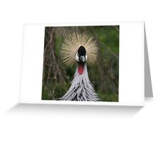 Who?......Me! Greeting Card