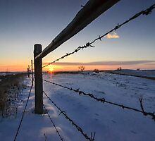 Snowy Sunrise against Barbed Wire by heartlandphoto