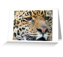 Hunters Gaze Greeting Card