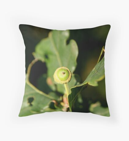 The Acorn's Morning Throw Pillow