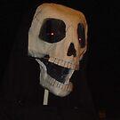 Skull Puppet by satsumagirl