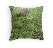newly formed waterfall Throw Pillow
