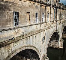 Bath's Pulteney Bridge by Nicole Petegorsky