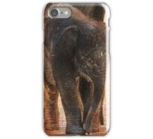Vintage Asian Baby Elephant iPhone Case/Skin