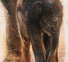Vintage Asian Baby Elephant by Carol Vega