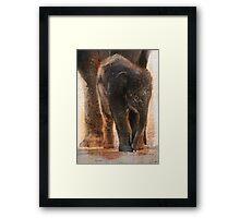 Vintage Asian Baby Elephant Framed Print