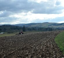 Spring Ploughing by photobymdavey